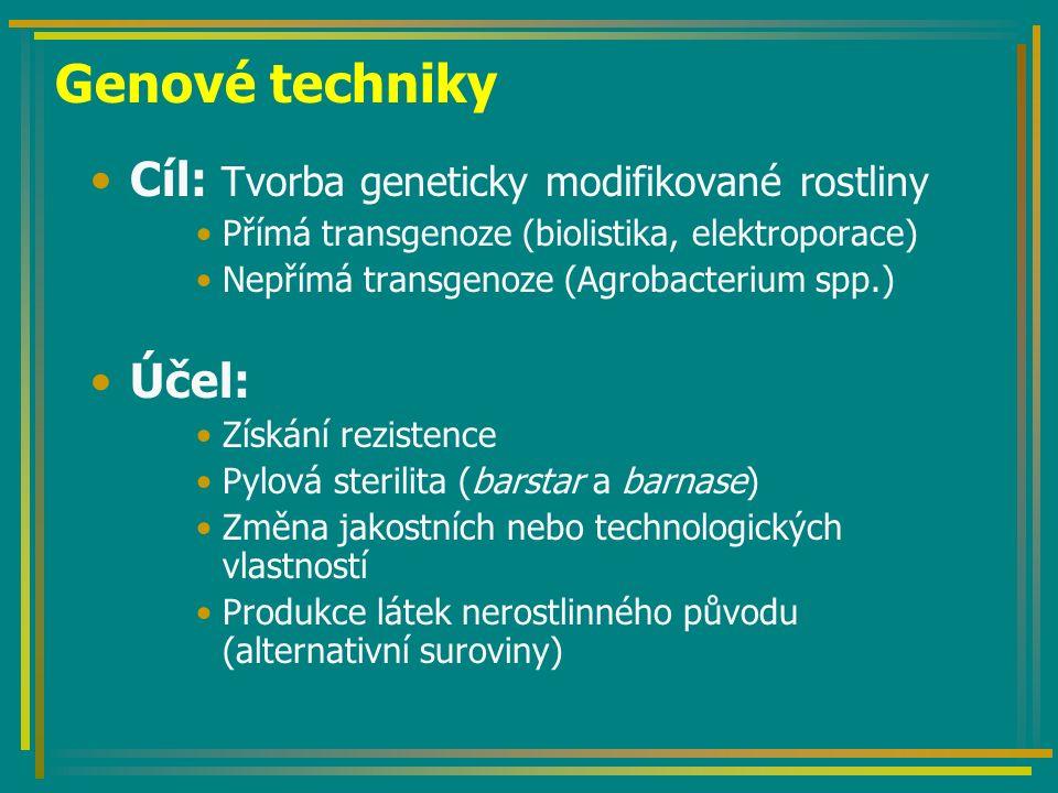 Genové techniky Cíl: Tvorba geneticky modifikované rostliny Přímá transgenoze (biolistika, elektroporace) Nepřímá transgenoze (Agrobacterium spp.) Účel: Získání rezistence Pylová sterilita (barstar a barnase) Změna jakostních nebo technologických vlastností Produkce látek nerostlinného původu (alternativní suroviny)