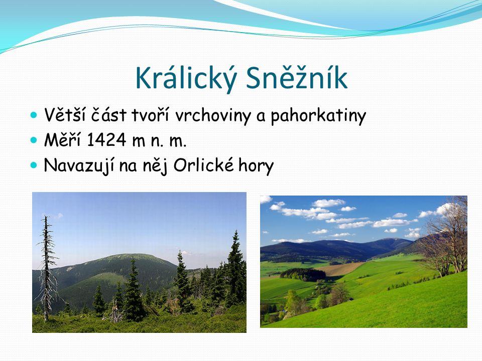 Králický Sněžník Větší část tvoří vrchoviny a pahorkatiny Měří 1424 m n.