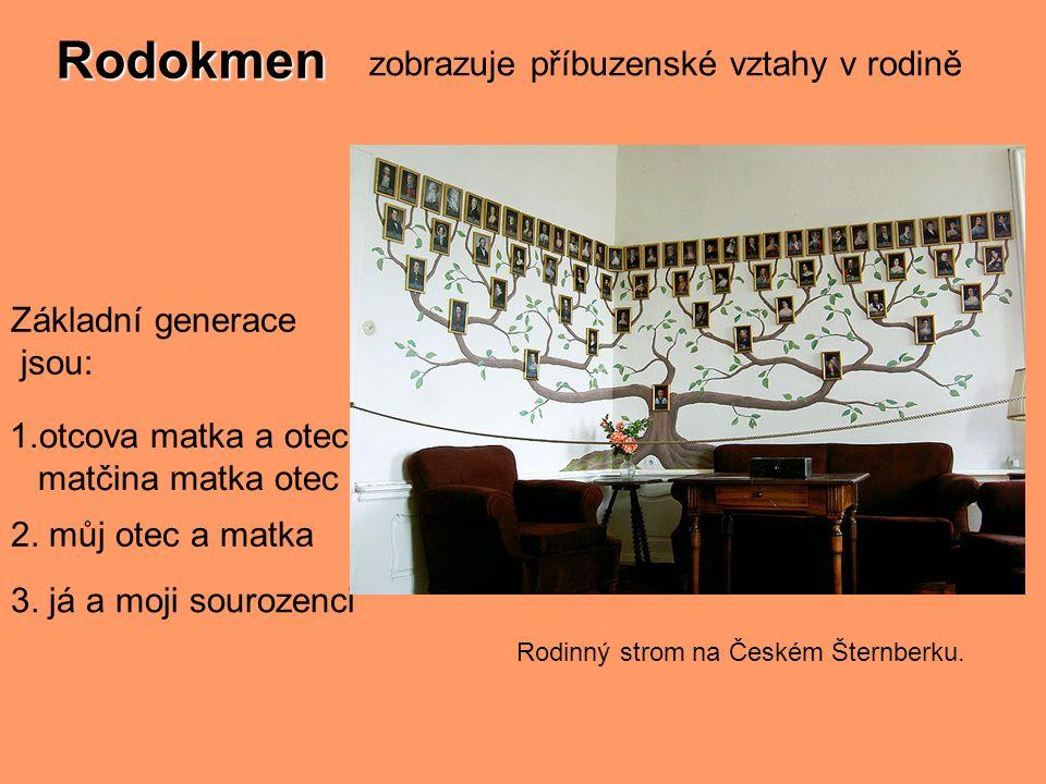 zobrazuje příbuzenské vztahy v rodině Základní generace jsou: Rodinný strom na Českém Šternberku. 3. já a moji sourozenci 2. můj otec a matka 1.otcova