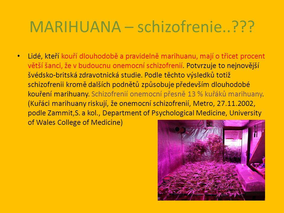 MARIHUANA – schizofrenie.. .