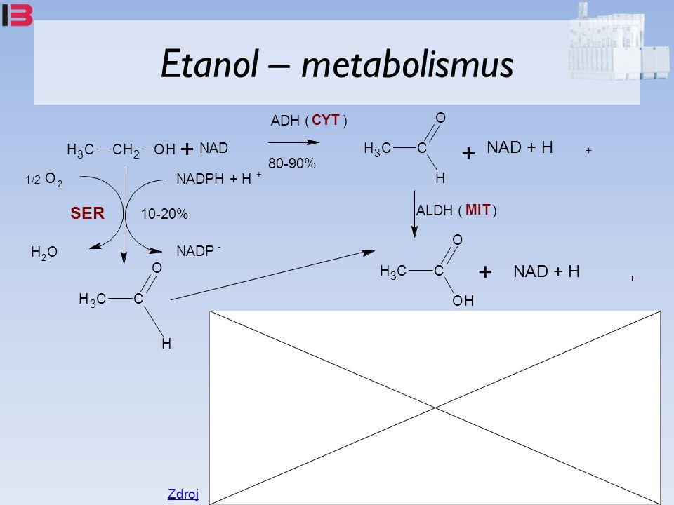Etanol – metabolismus CH 3 CH 2 OH + NAD CH 3 C O H + NAD + H + ADH ( CYT ) C O OH CH 3 + NAD + H + ALDH ( MIT ) C O CH 3 H 1/2 O 2 H 2 O NADPH + H + NADP - 80-90% 10-20% SER Zdroj