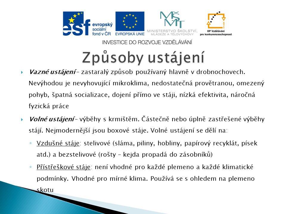 Obr. 5 – České landraseObr. 6 – české ušlechtilé Obr. 7 – Přeštické černostrakatéObr. 8 - Duroc
