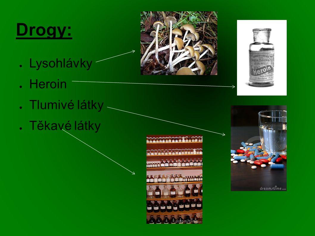 Drogy: ● Lysohlávky ● Heroin ● Tlumivé látky ● Těkavé látky