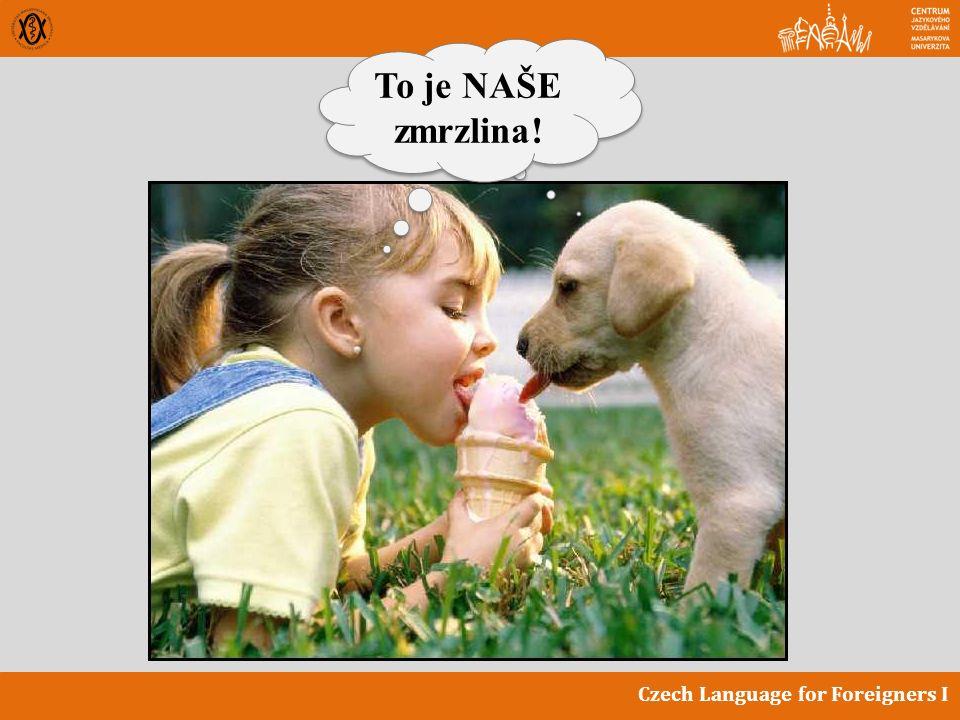 Czech Language for Foreigners I To je NAŠE zmrzlina!