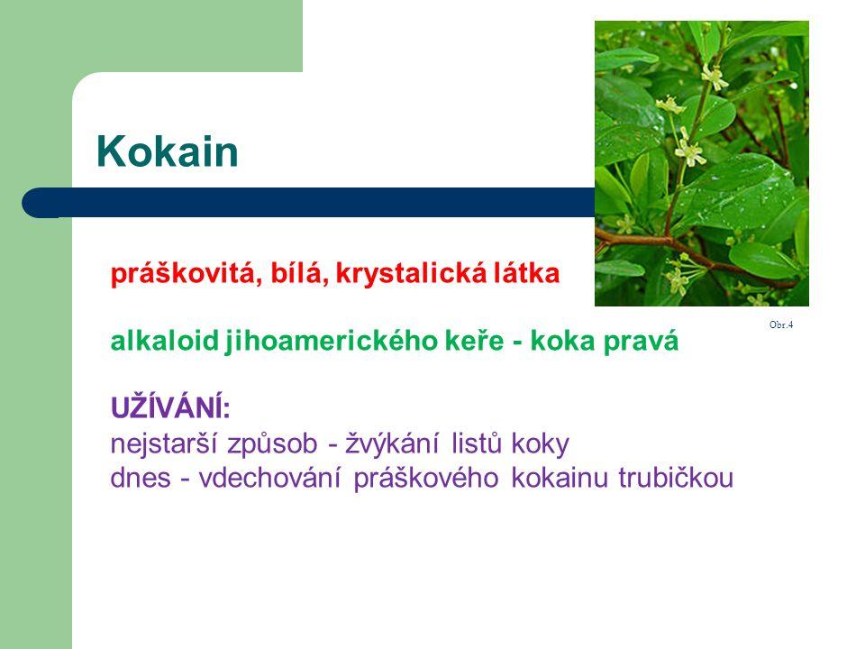 Kokain práškovitá, bílá, krystalická látka alkaloid jihoamerického keře - koka pravá UŽÍVÁNÍ: nejstarší způsob - žvýkání listů koky dnes - vdechování práškového kokainu trubičkou Obr.4