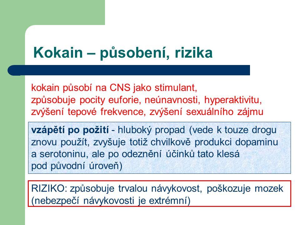 Kokain – působení, rizika kokain působí na CNS jako stimulant, způsobuje pocity euforie, neúnavnosti, hyperaktivitu, zvýšení tepové frekvence, zvýšení sexuálního zájmu vzápětí po požití - hluboký propad (vede k touze drogu znovu použít, zvyšuje totiž chvilkově produkci dopaminu a serotoninu, ale po odeznění účinků tato klesá pod původní úroveň) RIZIKO: způsobuje trvalou návykovost, poškozuje mozek (nebezpečí návykovosti je extrémní)