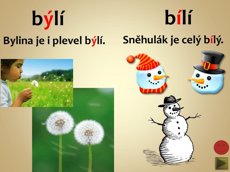býlí bílí Bylina je i plevel býlí. Sněhulák je celý bílý.