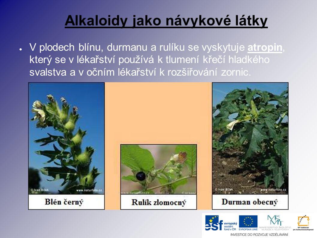 Alkaloidy jako návykové látky ● V plodech blínu, durmanu a rulíku se vyskytuje atropin, který se v lékařství používá k tlumení křečí hladkého svalstva