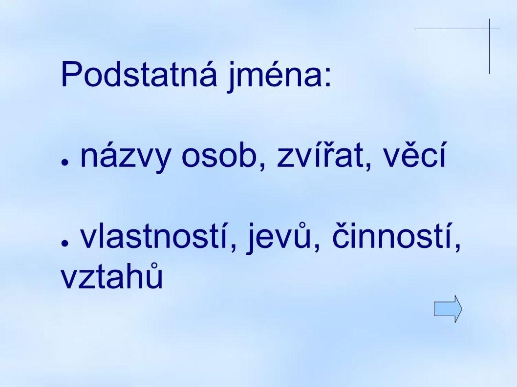 Co určujeme u podstatných jmen? (tzn. jaké mluvnické kategorie mají podst. jména?)
