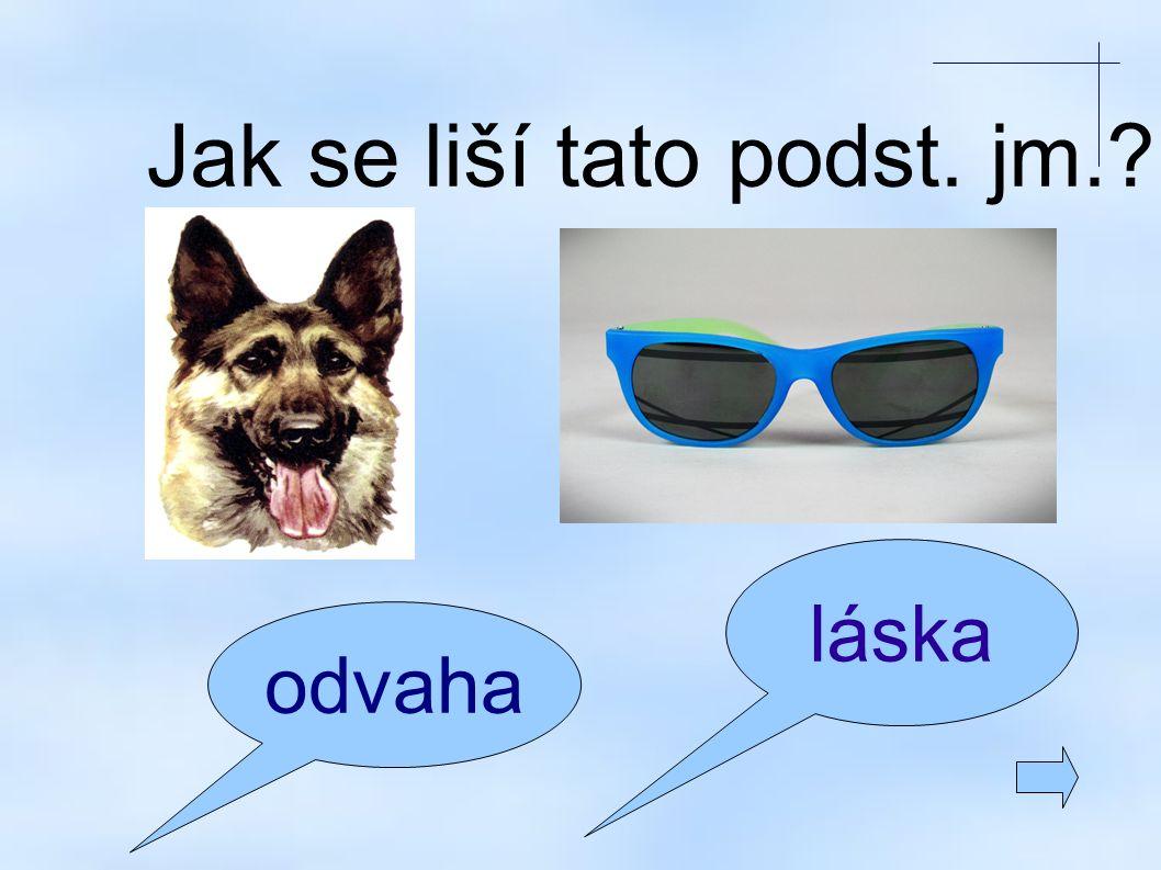 pes, brýle – konkrétní odvaha, láska - abstraktní
