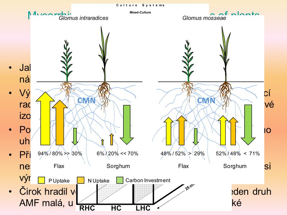 Mycorrhizal networks: common goods of plants shared under unequal terms of trade F.