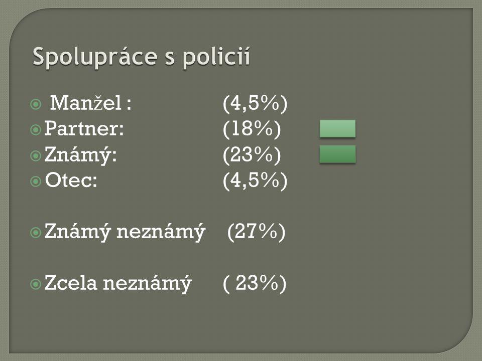  Man ž el : (4,5%)  Partner: (18%)  Známý: (23%)  Otec: (4,5%)  Známý neznámý (27%)  Zcela neznámý( 23%)