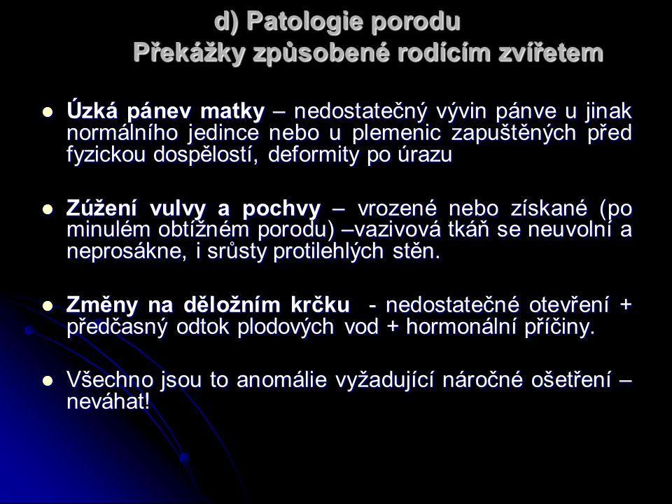 d) Patologie porodu Překážky způsobené rodícím zvířetem Úzká pánev matky – nedostatečný vývin pánve u jinak normálního jedince nebo u plemenic zapuštěných před fyzickou dospělostí, deformity po úrazu Úzká pánev matky – nedostatečný vývin pánve u jinak normálního jedince nebo u plemenic zapuštěných před fyzickou dospělostí, deformity po úrazu Zúžení vulvy a pochvy – vrozené nebo získané (po minulém obtížném porodu) –vazivová tkáň se neuvolní a neprosákne, i srůsty protilehlých stěn.