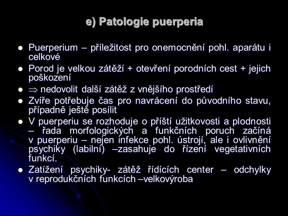 e) Patologie puerperia Puerperium – příležitost pro onemocnění pohl.