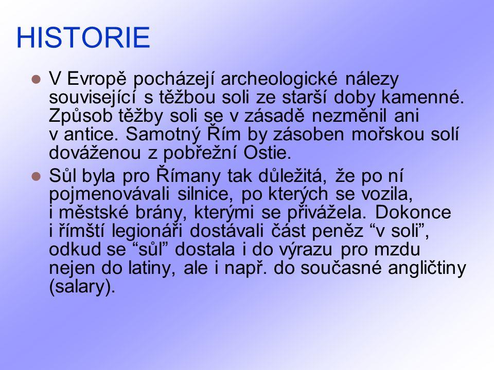 HISTORIE V Evropě pocházejí archeologické nálezy související s těžbou soli ze starší doby kamenné.