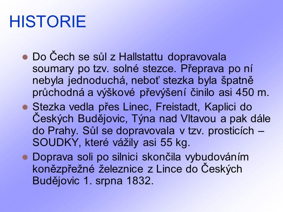 HISTORIE Do Čech se sůl z Hallstattu dopravovala soumary po tzv.