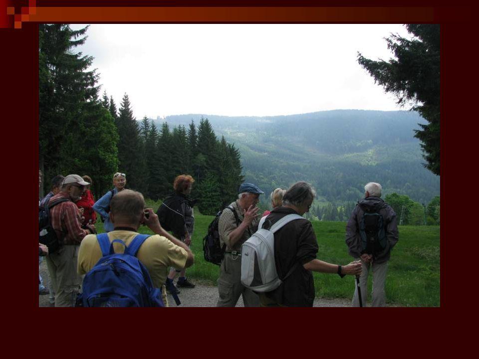 Od pramene k soutoku měří Volyňka 46 km, výškový rozdíl mezi pramenem (1 115m n.m.) a ústím (388m n.m.) činí 727m.