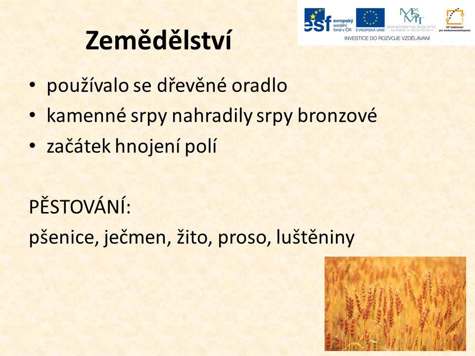 Zemědělství používalo se dřevěné oradlo kamenné srpy nahradily srpy bronzové začátek hnojení polí PĚSTOVÁNÍ: pšenice, ječmen, žito, proso, luštěniny