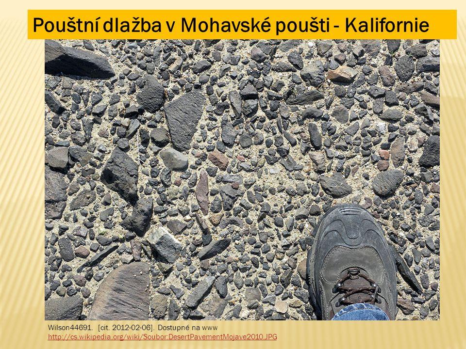 Pouštní dlažba v Mohavské poušti - Kalifornie Wilson44691. [cit. 2012-02-06]. Dostupné na www http://cs.wikipedia.org/wiki/Soubor:DesertPavementMojave
