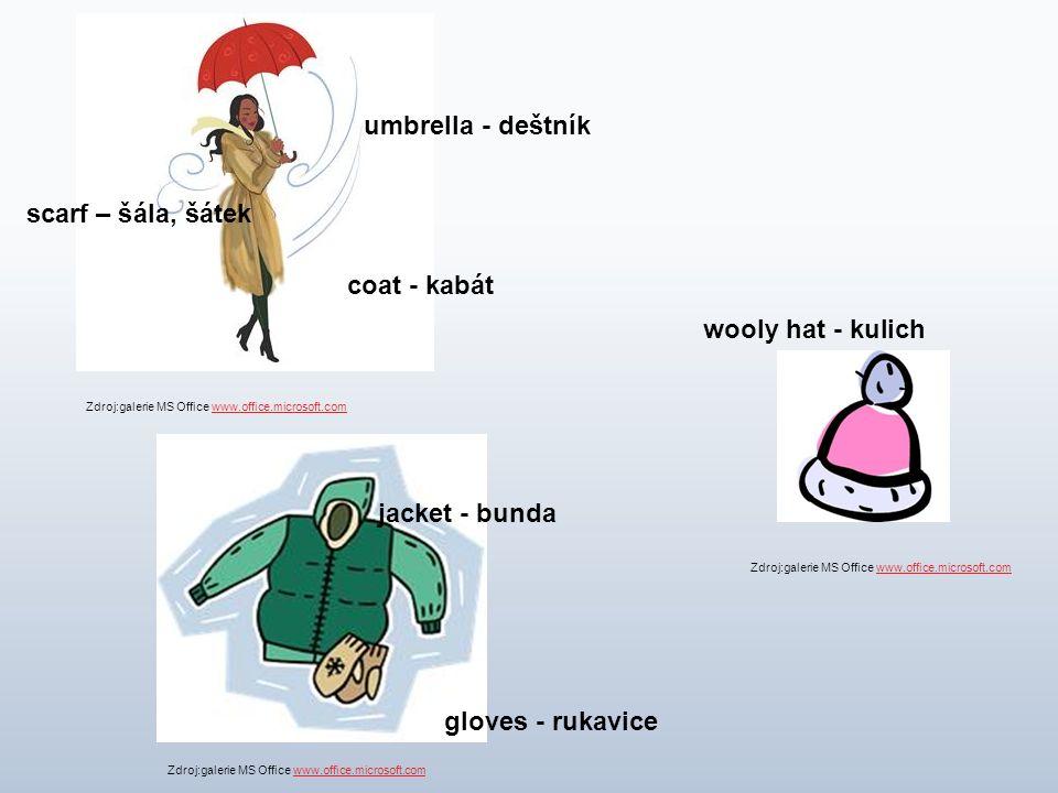 coat - kabát scarf – šála, šátek umbrella - deštník jacket - bunda gloves - rukavice wooly hat - kulich Zdroj:galerie MS Office www.office.microsoft.c