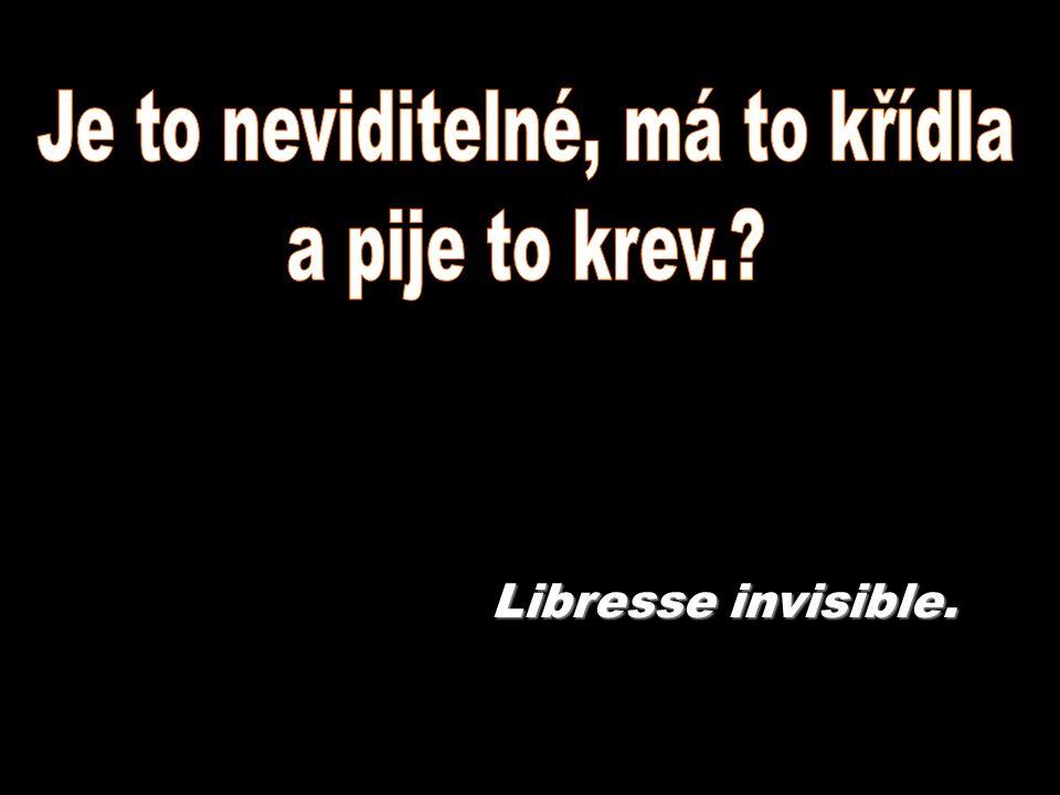 Libresse invisible.