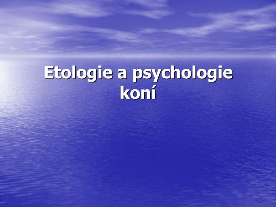 Etologie a psychologie koní