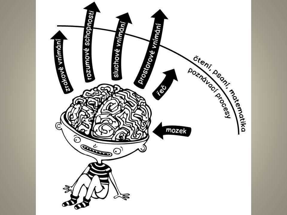 Poznávací procesy jejich vliv na učení, život Řeč Sluchová percepce (fonemický sluch, fonologická manipulace) Zraková percepce Pravo-levá a prostorová orientace Orientace v čase Paměť Automatizace Koncentrace pozornosti Kombinace různých deficitů