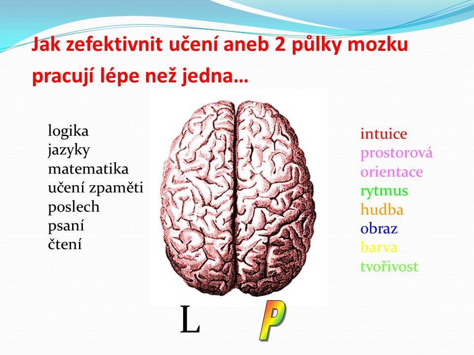 Jak zefektivnit učení aneb 2 půlky mozku pracují lépe než jedna… logika jazyky matematika učení zpaměti poslech psaní čtení intuice prostorová orientace rytmus hudba obraz barva tvořivost L