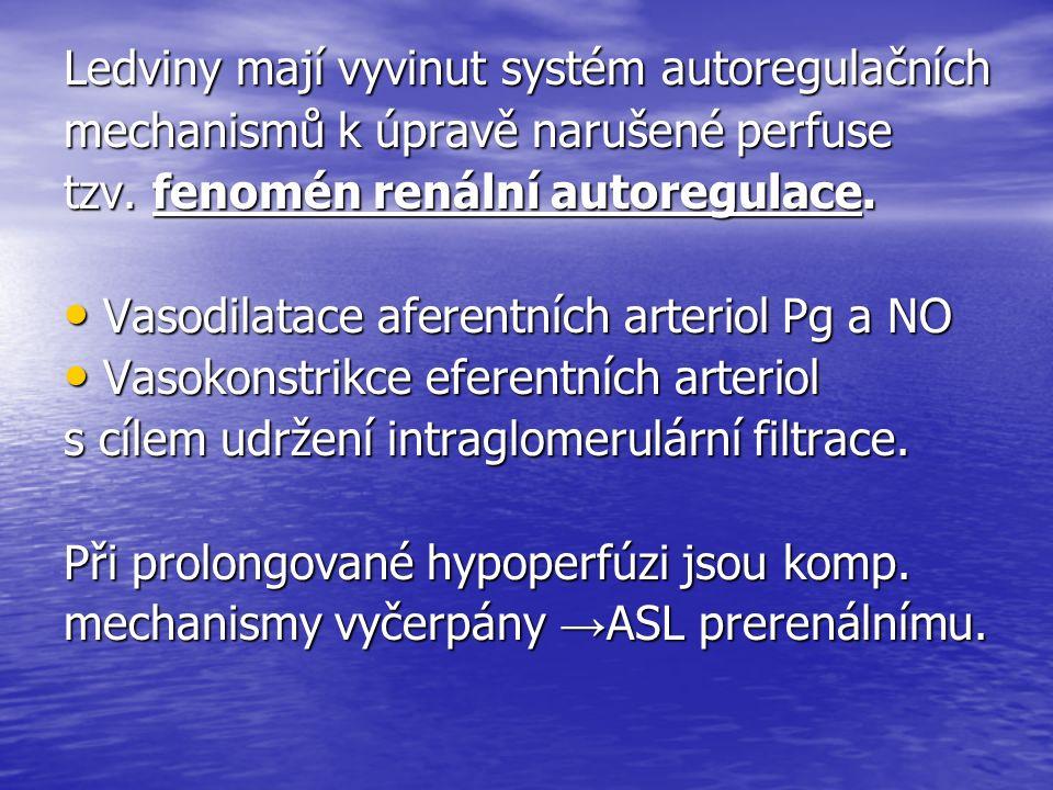 ASL postrenální - jen okrajově Překážka v urodynamice - konkrementy, prostata, tumor, koagulum, útlak hematomem, iatrogenní… Překážka v urodynamice - konkrementy, prostata, tumor, koagulum, útlak hematomem, iatrogenní… Dlouhodobá obstrukce vede Dlouhodobá obstrukce vede k hydronefróze a postižení renálního parenchymu k hydronefróze a postižení renálního parenchymu Komp.