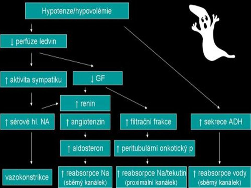 Akutní selhání ledvin – prerenální