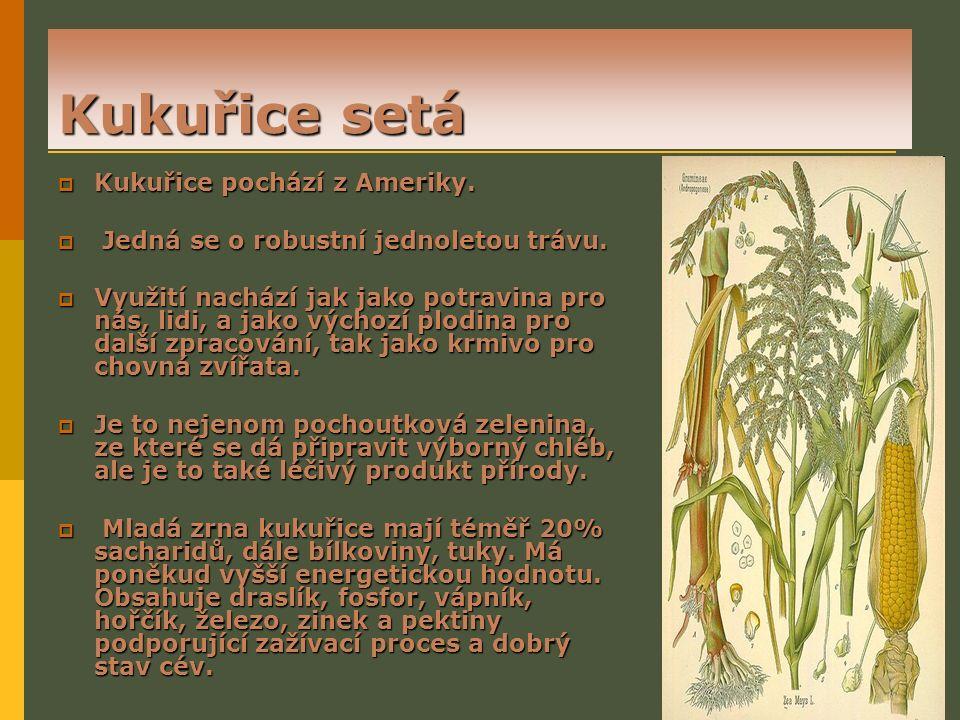 Citace  Pšenice[online].7. červen 2011 2:20. [cit.