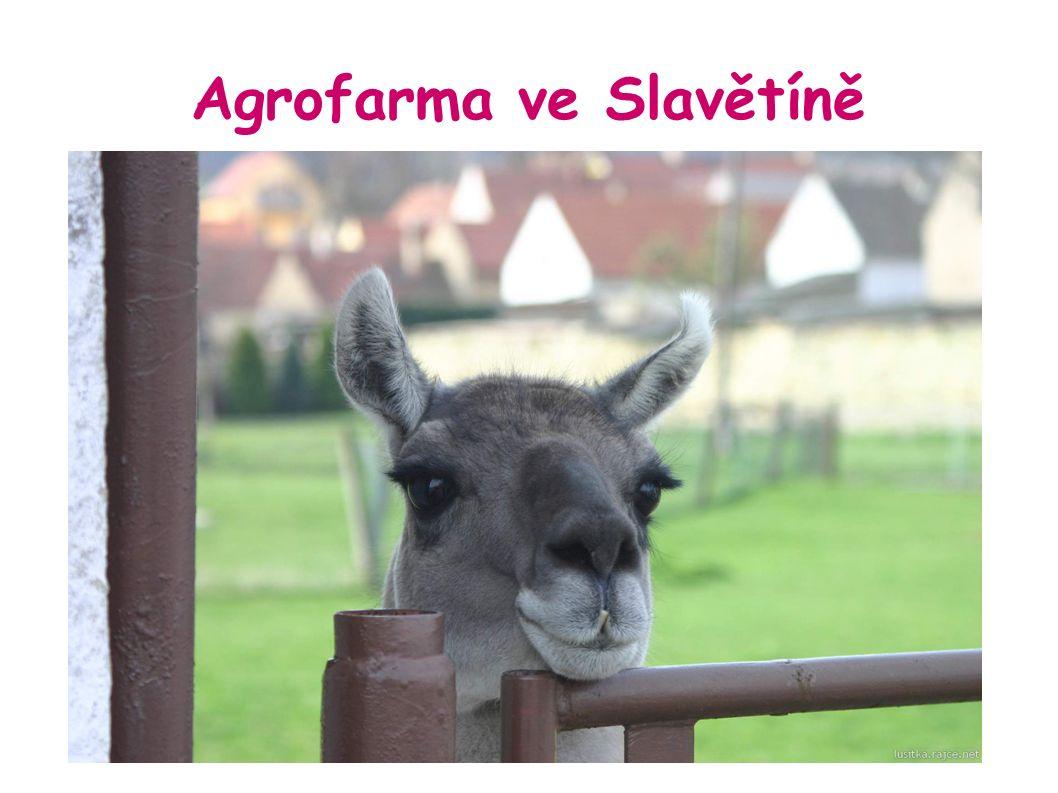 Agrofarma ve Slavětíně