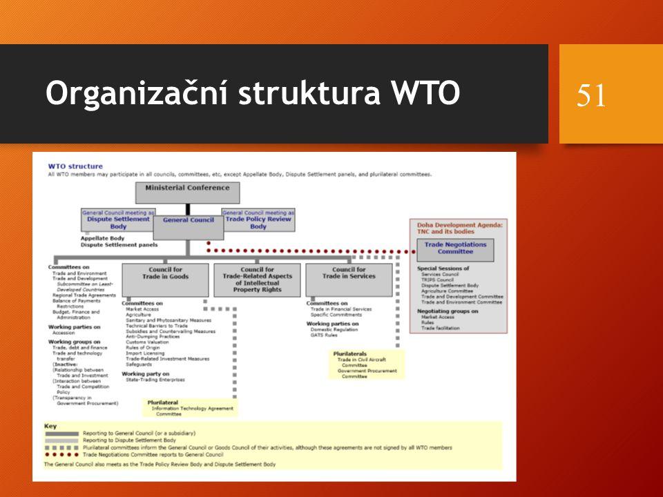 Organizační struktura WTO 51