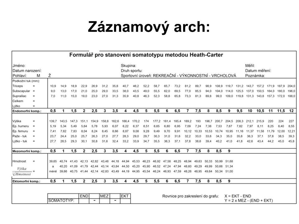 Záznamový arch:
