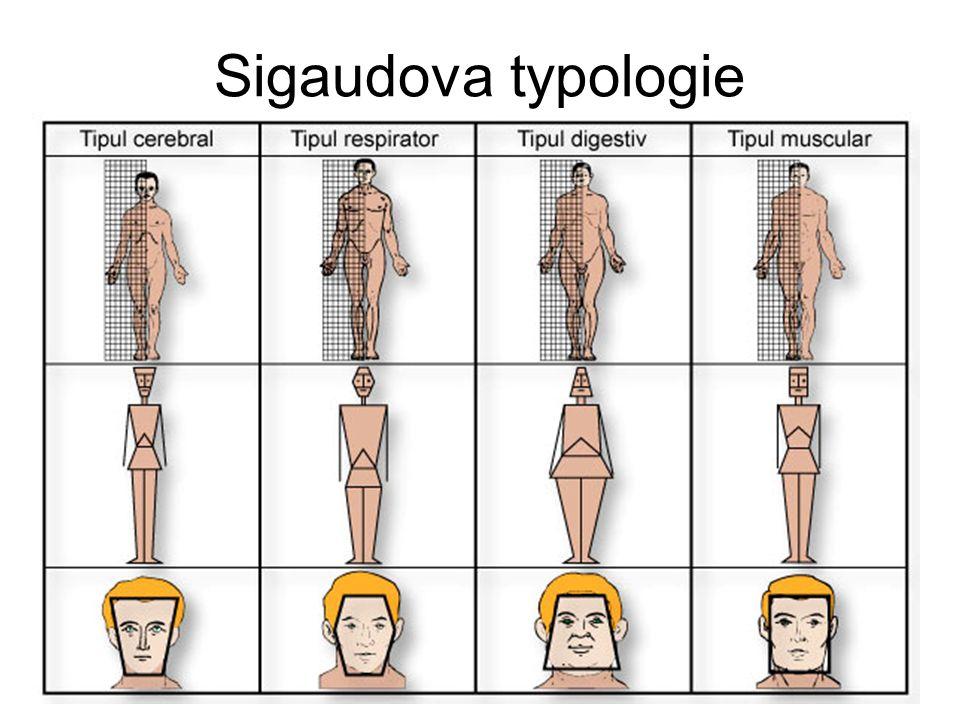 Sigaudova typologie