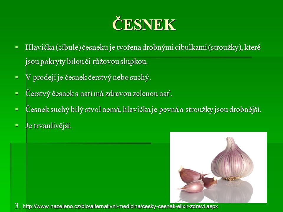 ČESNEK  Hlavička (cibule) česneku je tvořena drobnými cibulkami (stroužky), které jsou pokryty bílou či růžovou slupkou.  V prodeji je česnek čerstv