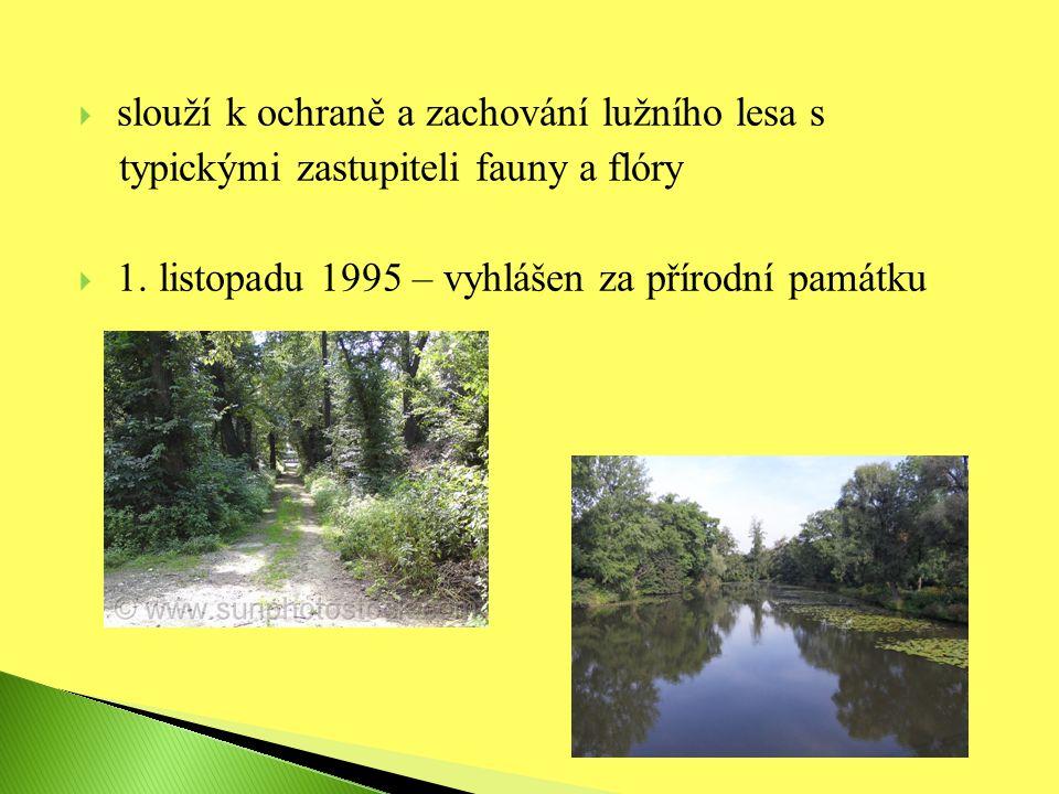  slouží k ochraně a zachování lužního lesa s typickými zastupiteli fauny a flóry  1.