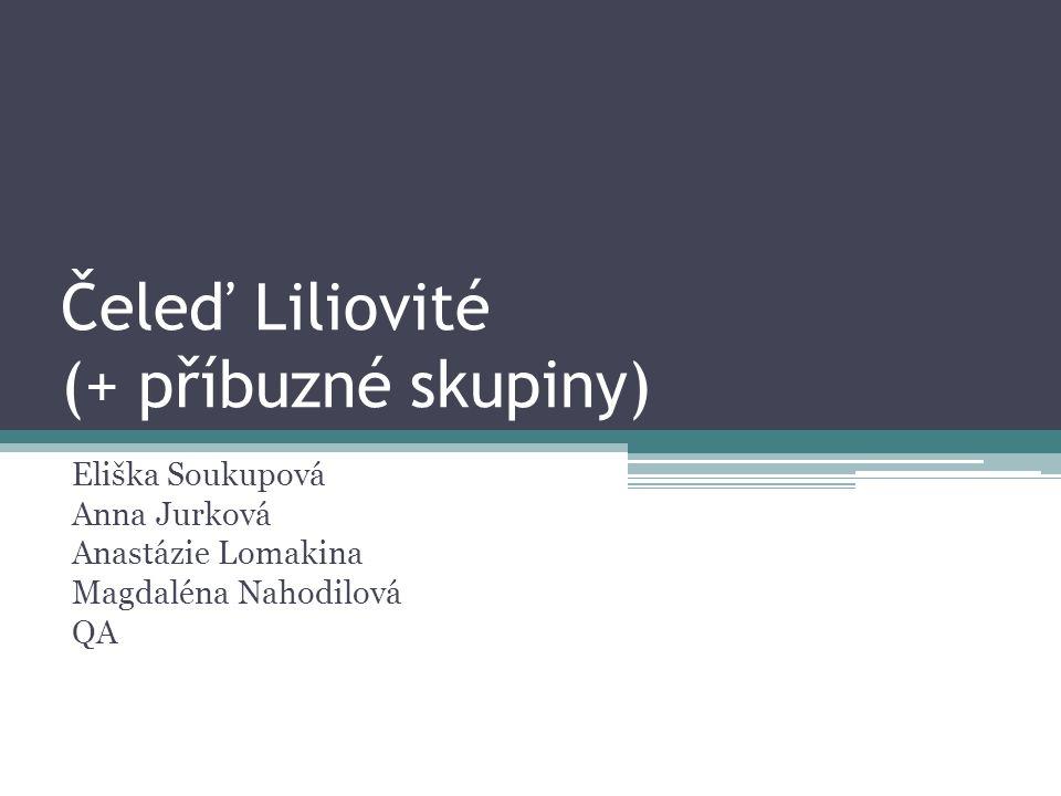 Čeleď Liliovité (+ příbuzné skupiny) Eliška Soukupová Anna Jurková Anastázie Lomakina Magdaléna Nahodilová QA