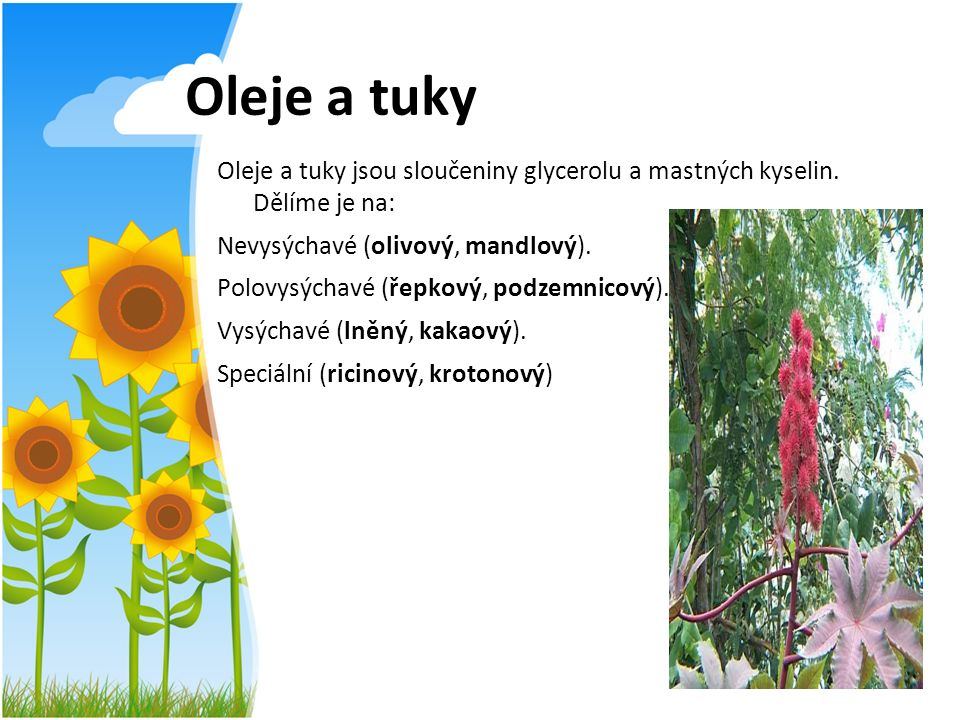 Oleje a tuky Oleje a tuky jsou sloučeniny glycerolu a mastných kyselin. Dělíme je na: Nevysýchavé (olivový, mandlový). Polovysýchavé (řepkový, podzemn