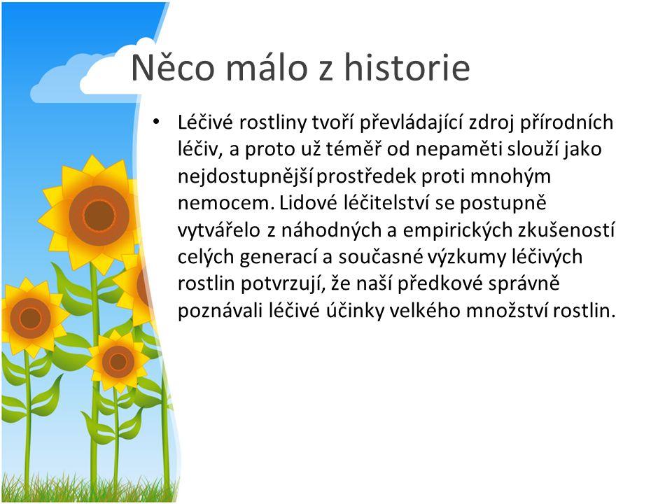 Něco málo z historie Léčivé rostliny tvoří převládající zdroj přírodních léčiv, a proto už téměř od nepaměti slouží jako nejdostupnější prostředek pro
