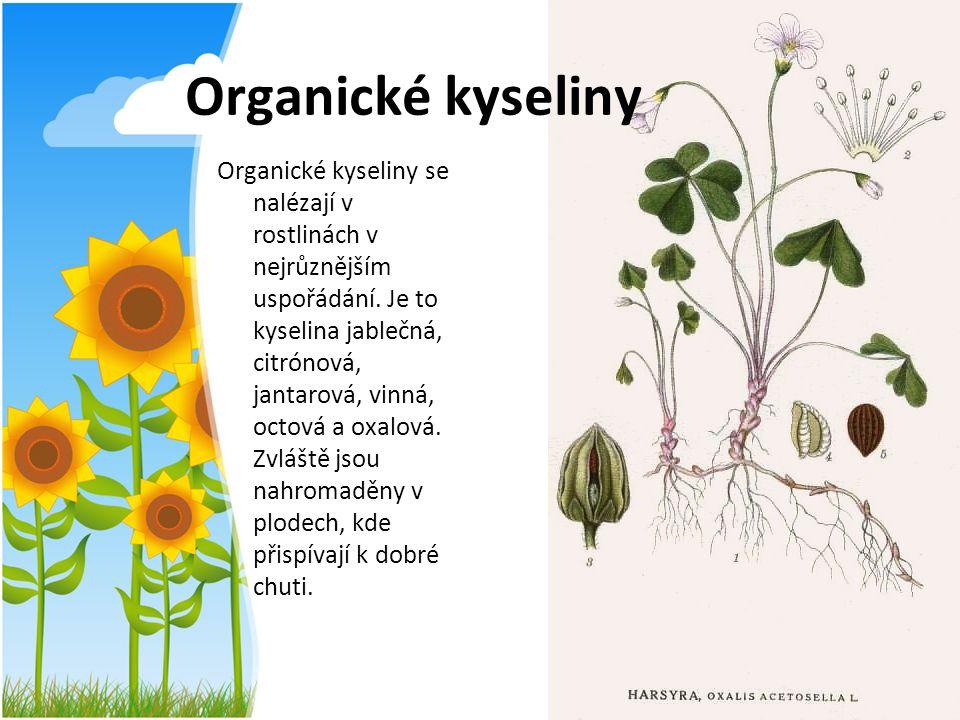 Organické kyseliny Organické kyseliny se nalézají v rostlinách v nejrůznějším uspořádání. Je to kyselina jablečná, citrónová, jantarová, vinná, octová