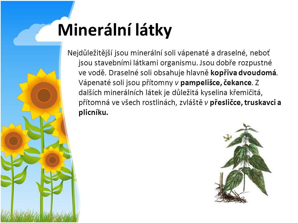 Minerální látky Nejdůležitější jsou minerální soli vápenaté a draselné, neboť jsou stavebními látkami organismu. Jsou dobře rozpustné ve vodě. Draseln