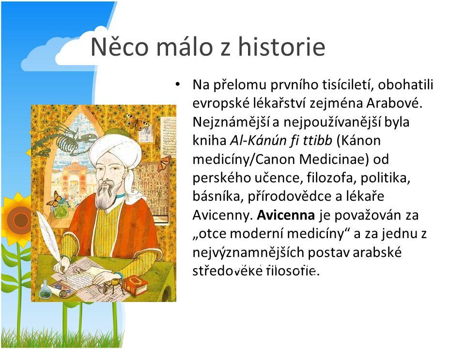 Něco málo z historie Na přelomu prvního tisíciletí, obohatili evropské lékařství zejména Arabové. Nejznámější a nejpoužívanější byla kniha Al-Kánún fi