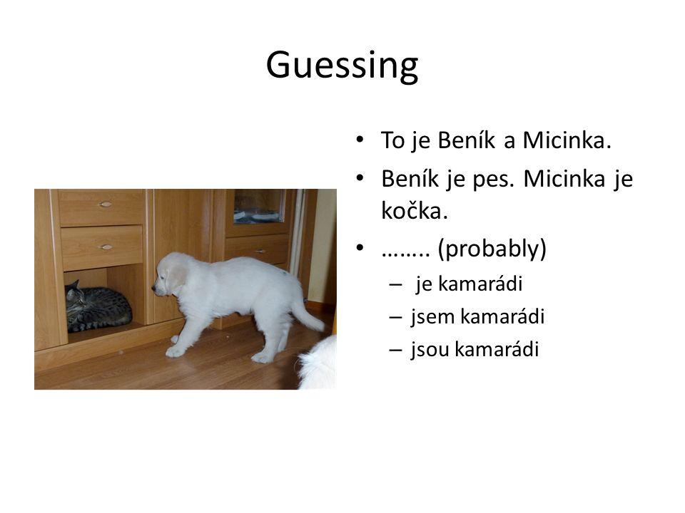 Guessing To je Beník a Micinka. Beník je pes. Micinka je kočka.