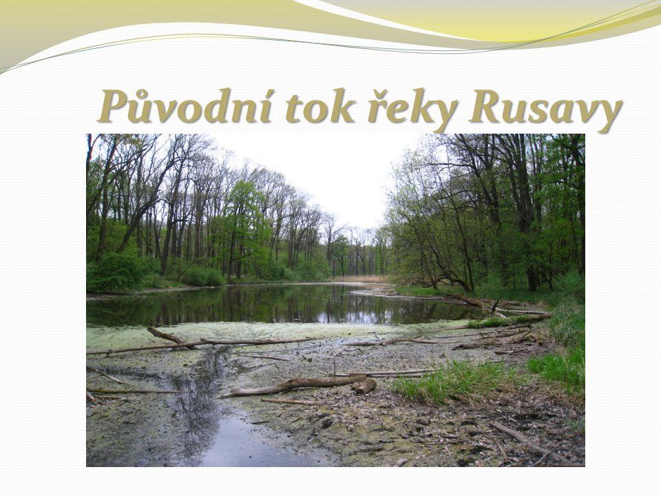 Původní tok řeky Rusavy Původní tok řeky Rusavy
