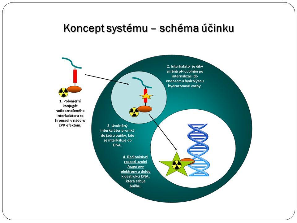 Koncept systému – schéma účinku