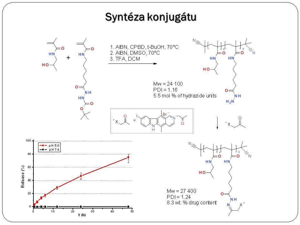 Syntéza konjugátu
