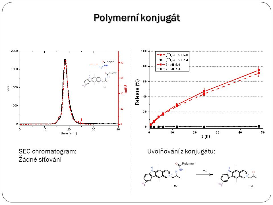 Polymerní konjugát SEC chromatogram: Žádné síťování Uvolňování z konjugátu: