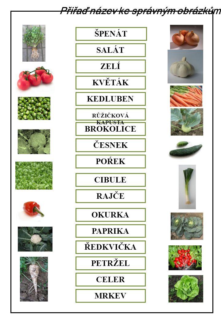 Červenou pastelkou zakroužkuj listovou zeleninu, modrou zakroužkuj košťálovou, zelenou cibulovou, žlutou plodovou a hnědou kořenovou zeleninu.