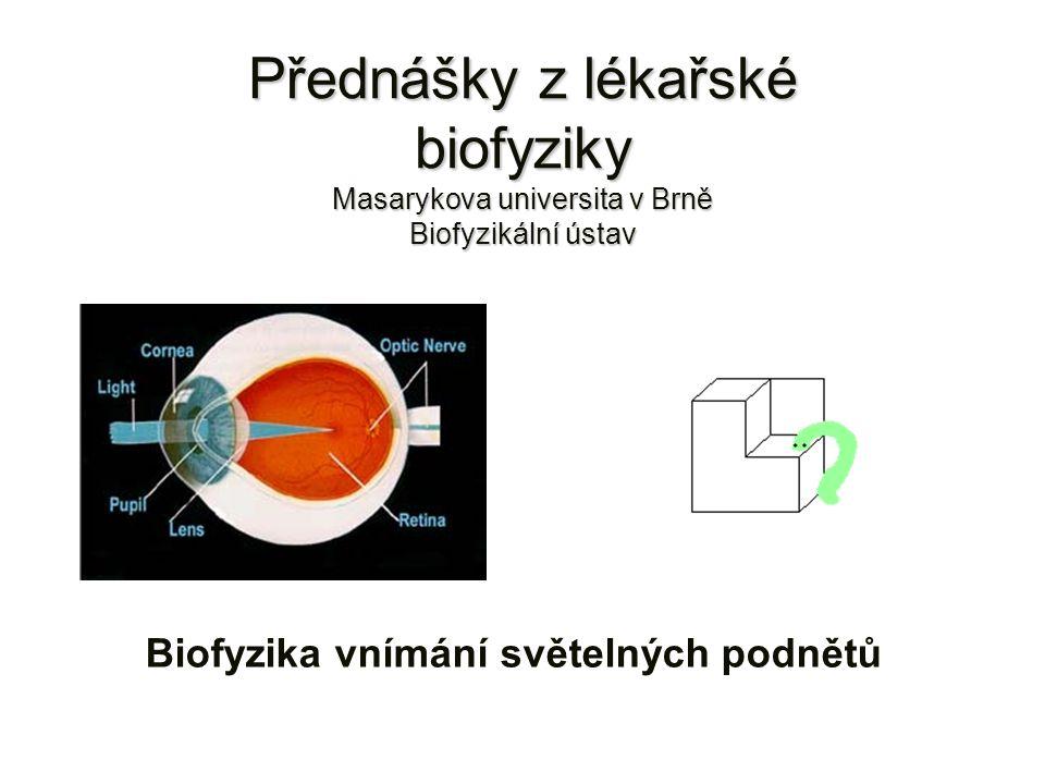 Přednášky z lékařské biofyziky Masarykova universita v Brně Biofyzikální ústav Biofyzika vnímání světelných podnětů